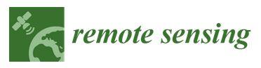 Remote_sensing_logo