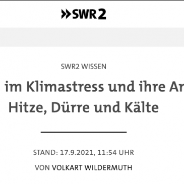 """Tipp: SWR2 Wissen Broadcast """"Early Cultures under Climate Stress and their Responses to Heat, Drought and Cold."""""""